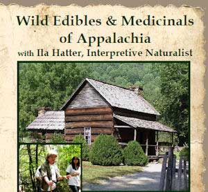 wild-edibles-medicinals-of-appalachia-thumb